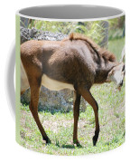 The Stance Coffee Mug