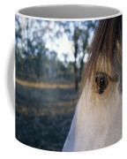 The Staring Eye Of A Clydesdale Horse Coffee Mug