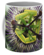 The Startling Petals And Stamen Coffee Mug by Jason Edwards