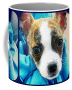 The Three Amigos Teacup Chihuahua Coffee Mug