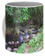 The Trail By The Creek Coffee Mug