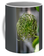 The World Of Clematis  Coffee Mug