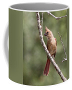 The Youngster Coffee Mug
