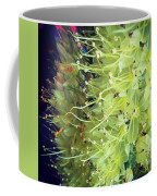 These Flowers Were On Their Way Out Coffee Mug