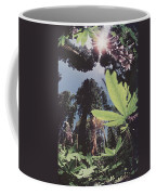 This Shot Is An Enlargement Of 55f13 Coffee Mug