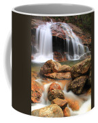 Thomson Falls Coffee Mug