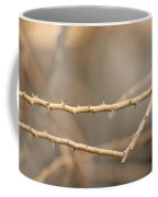 Thorny Desert Plant Inside The Desert Coffee Mug by Joel Sartore