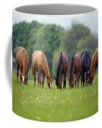 Thoroughbred Horse, Ireland Coffee Mug