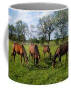 Thoroughbred Horses, Yearlings, Ireland Coffee Mug