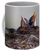 Three Baby Robins Coffee Mug