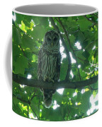Three Barred Owls Coffee Mug