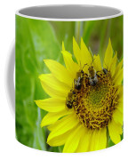 Three Bees Hunkering Down Coffee Mug