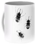 Three Beetles X-ray Coffee Mug