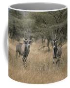 Three Beisa Oryxes In Kenyas Samburu Coffee Mug