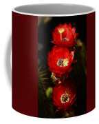 Three Of A Kind  Coffee Mug