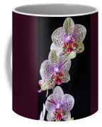 Three Orchids Coffee Mug