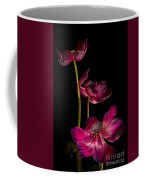 Three Purple Anemones Coffee Mug