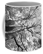 Three Trees Reach For The Sky Black And White Coffee Mug
