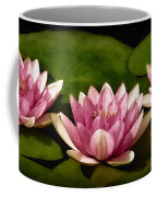 Three Water Lilies Coffee Mug