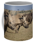 Three White Rhinos Line Up In Solio Coffee Mug