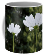 Three Wildflowers Coffee Mug