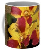 Three Yellow And Red Orchids Coffee Mug