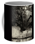 Through The Wall Bw Coffee Mug