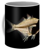 Tibetan Glassfish Coffee Mug