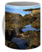 Tidepool In Maine Coffee Mug