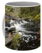 Tidga Creek Falls 1 Coffee Mug