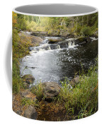 Tidga Creek Falls 2 Coffee Mug