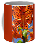 Tiger Lily Close Up Coffee Mug