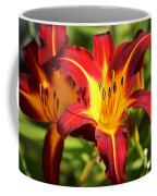 Tiger Lily0226 Coffee Mug