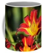 Tiger Lily0239 Coffee Mug
