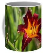 Tiger Lily0275 Coffee Mug