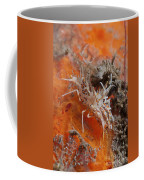 Tiger Shrimp On Orange Sponge, Bali Coffee Mug