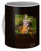 Tiger-stripe Monkey Frog Coffee Mug