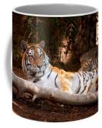 Tigress And Cubs Coffee Mug