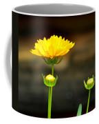 Times Three Coffee Mug