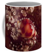 Tiny Cowrie Shell On Dendronephtya Soft Coffee Mug