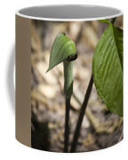 Tiny Jack In The Pulpit Coffee Mug