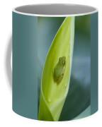 Tiny Tree Frog Cradle Coffee Mug