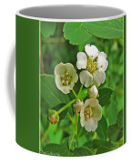 Tiny White Flowers Of A Bush Coffee Mug