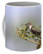 Tipping Around Coffee Mug