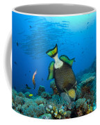 Titan Triggerfish Picking At Coral Coffee Mug