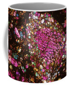 Tlm Of Chondrite Coffee Mug