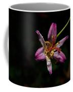 Toad Lilly 2 Coffee Mug