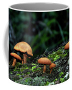 Toadstool Village Coffee Mug by Kaye Menner