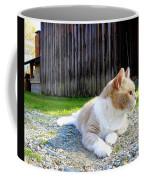 Toby Old Mill Cat Coffee Mug by Sandi OReilly