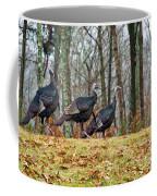 Tom Turkeys All In A Row 1 Coffee Mug